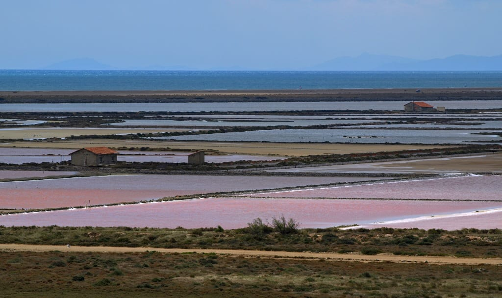 Terroir et Traditions : Les Salins d'Aigues-Mortes